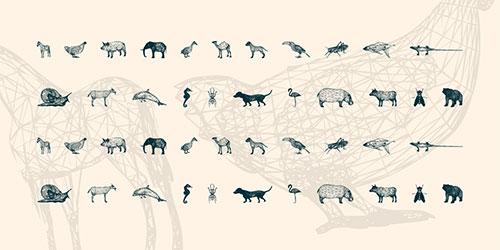 3D Animals